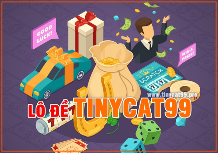 Nhà cái Tinycat99 lừa đảo? Có nên chơi lô đề online tại Tinycat99 hay không?