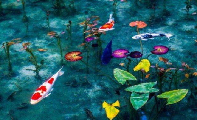 Mơ thấy hồ nước đánh con gì? Giải mã giấc mơ thấy hồ nước